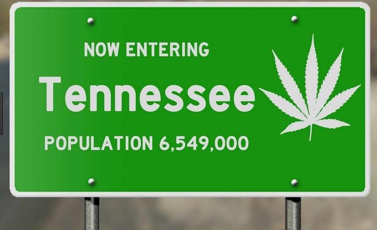 Tallahassee Just Opened A New Medical Marijuana Dispensary