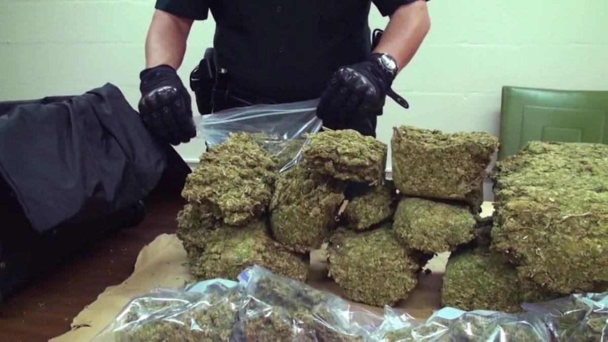 Over $2 Million of Marijuana Seized in Omaha