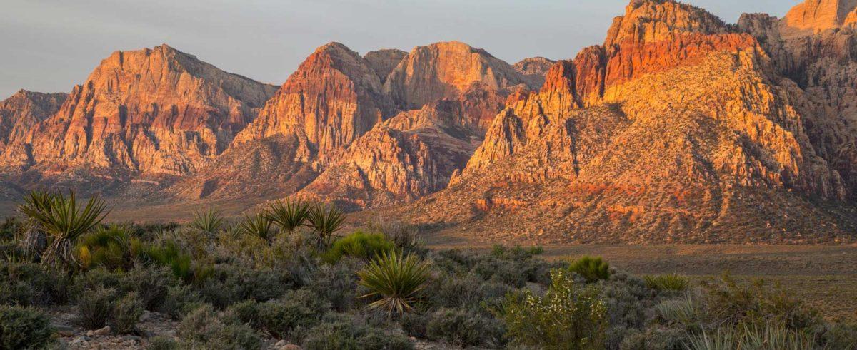 Nevada Recreational Marijuana Sales Top $41M in March