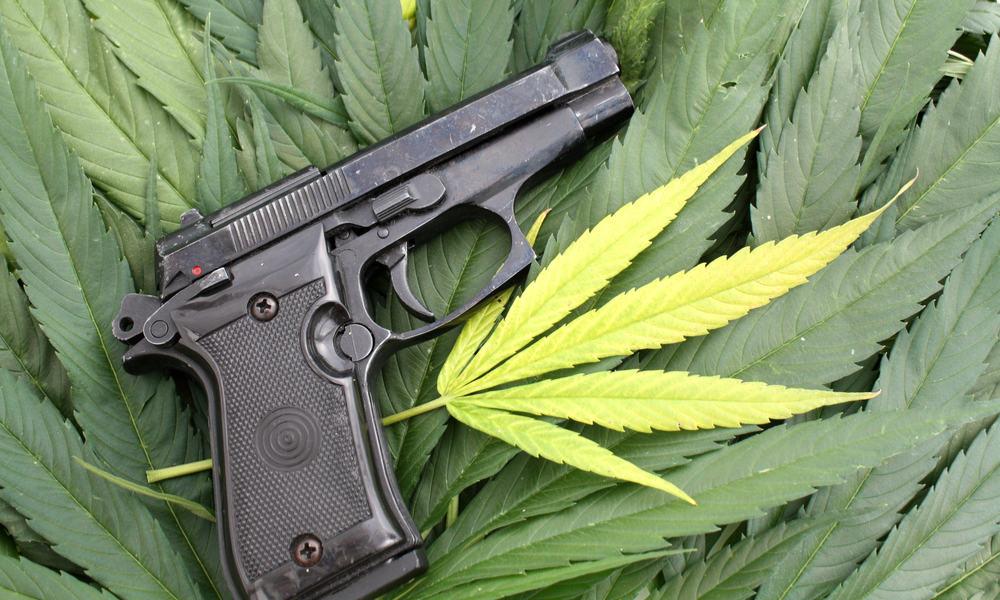 Massachusetts Residents Must Choose Marijuana or Guns