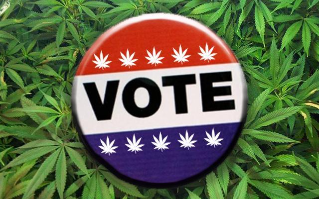 Michigan Votes to Legalize Marijuana
