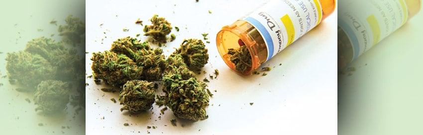 The Next World-Class Cannabis Play Has Arrived
