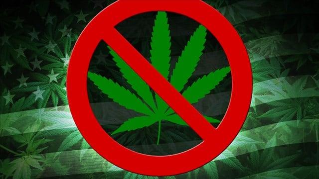 Several Michigan Communities Vote to Ban Marijuana