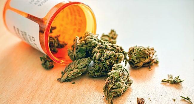 Pot Stocks Headed Higher as Israel Backs the Export of Medicinal Marijuana