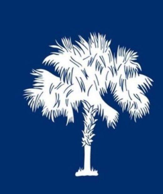 South Carolina Politician Says Legalizing Marijuana for Medicinal Use Would Do This