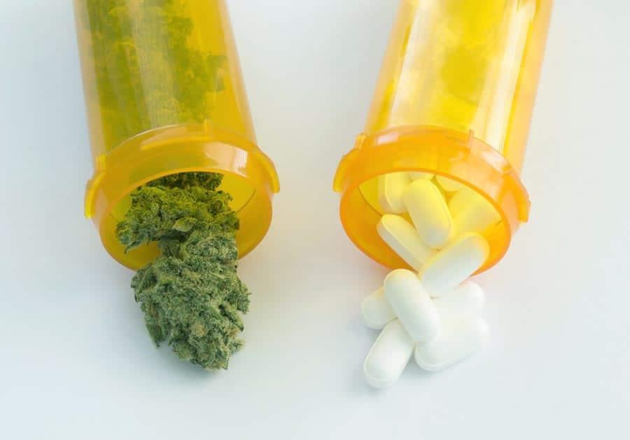 Illinois' Opioid Alternative Program Kicked Off This Week