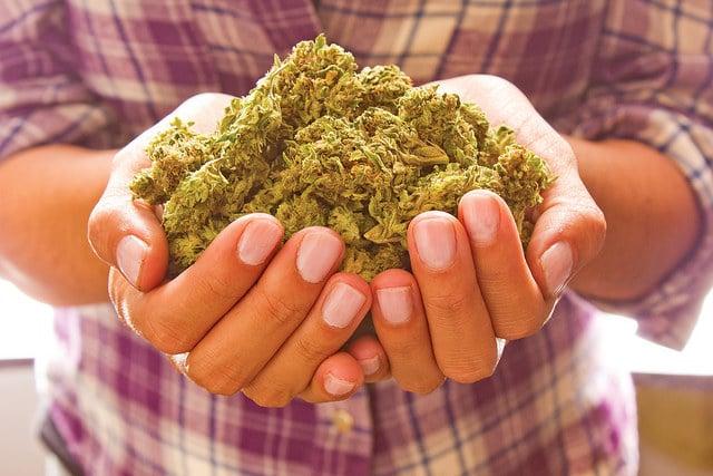 Lawmakers in Hawaii Discuss a Marijuana Legalization Bill