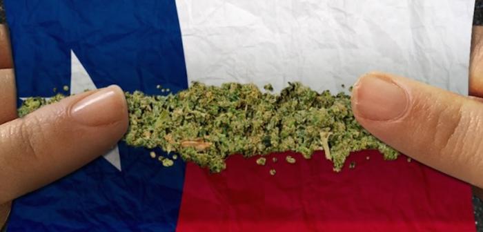 New Study Says Daily Use of High Potent Marijuana May Increase Risk of Psychosis