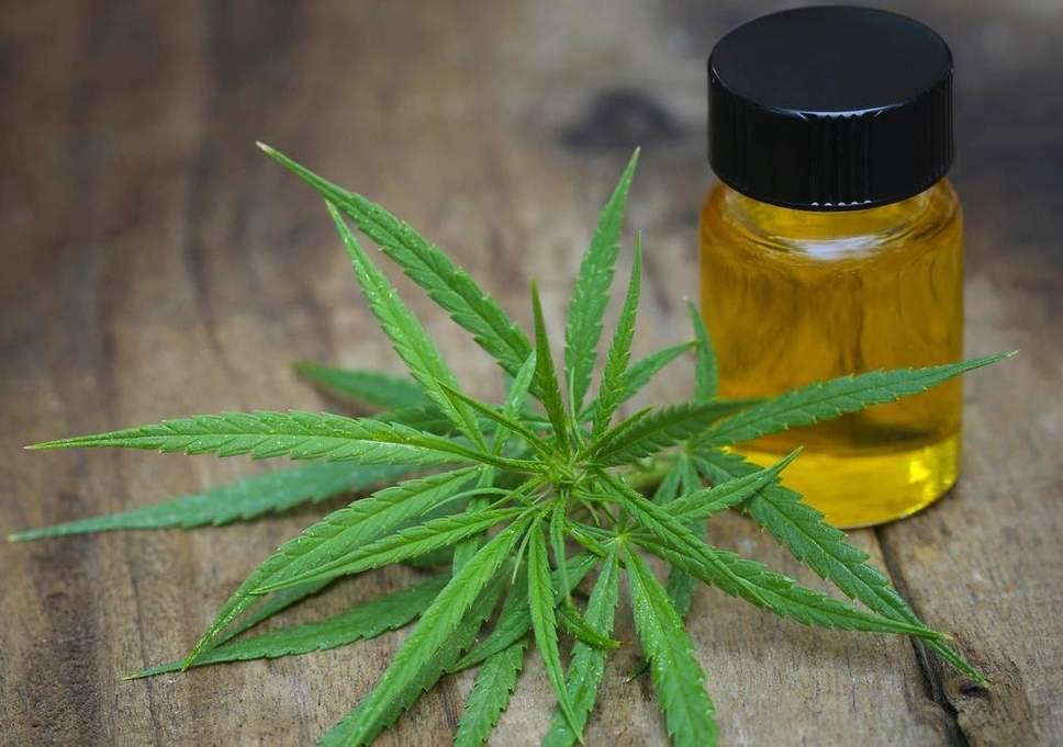 Georgia Senate Clears Bill for Medical Marijuana Oil