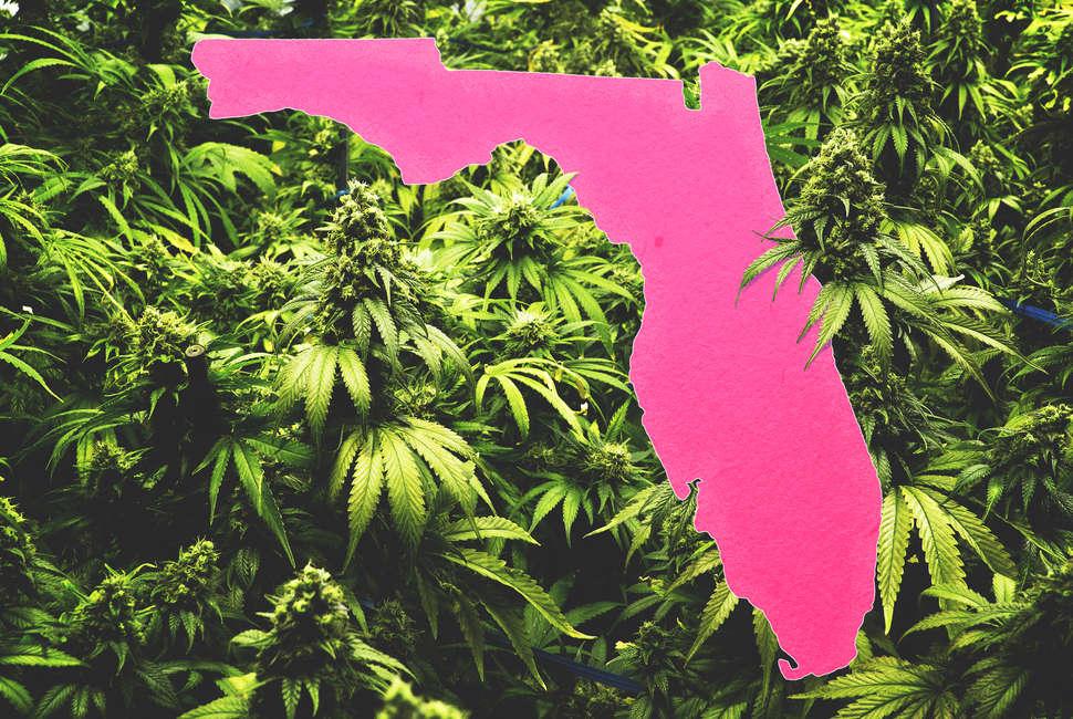 Florida Senate Votes to Allow Medical Marijuana Smoking
