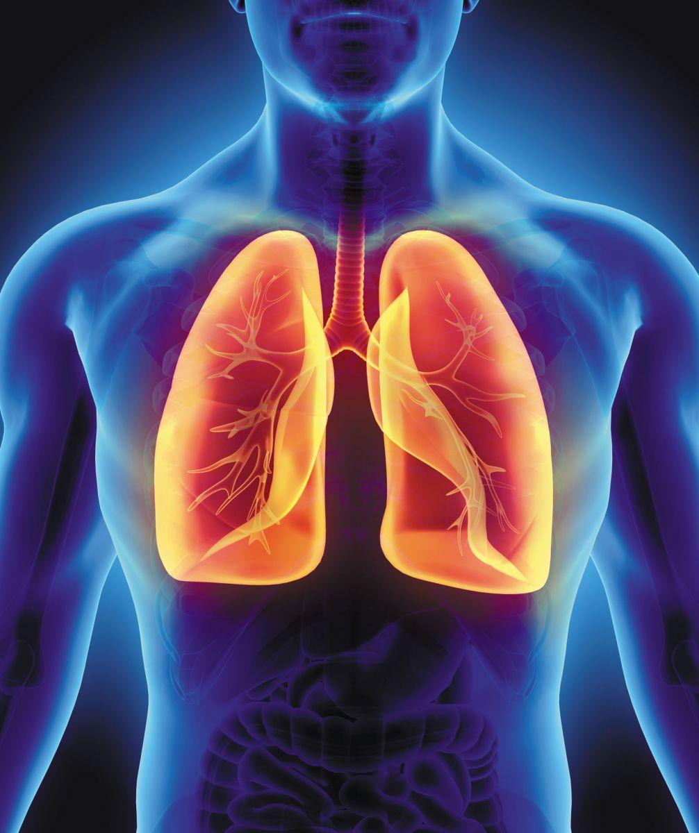 How Does Marijuana Smoking Impact Lungs?