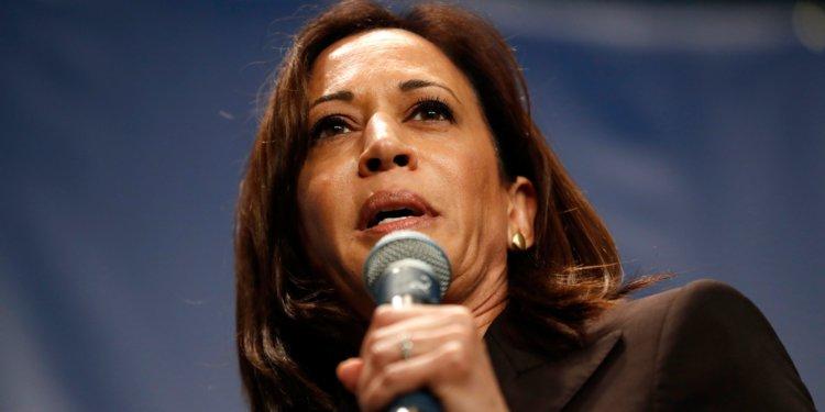 Things Got Feisty Over Marijuana at the Democratic Debate