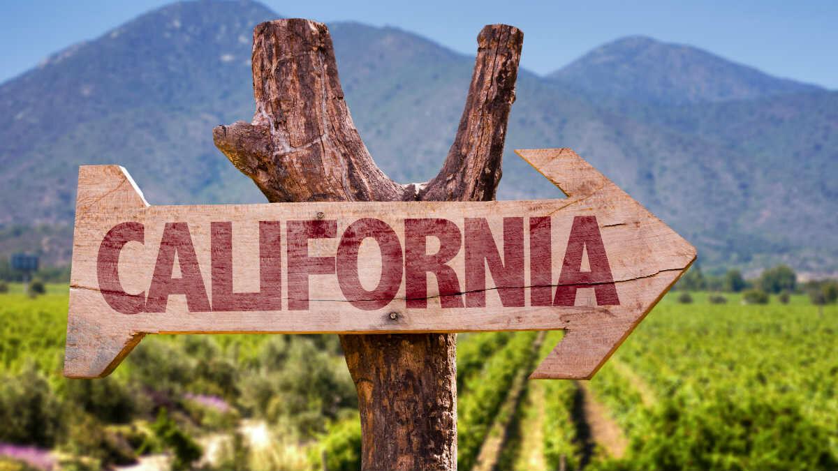 California's Legal Marijuana Market is Biggest in World