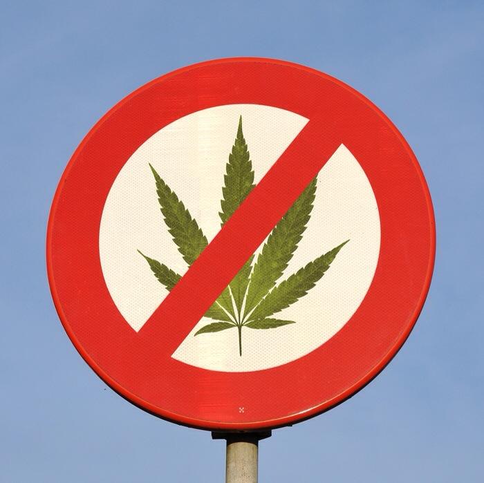 Almost Half of Michigan's Communities Have Banned Recreational Marijuana