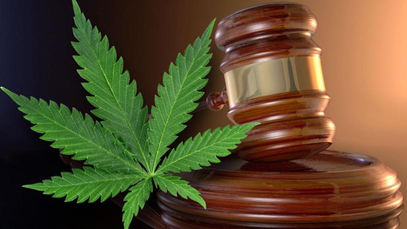 House Panel Makes History Approving Bill to Legalize Marijuana