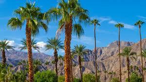 Palm Springs City Has a 'Zero Tolerance' for Marijuana Odor