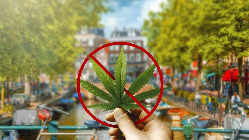 New Order Says South Bay Marijuana Shops Can No Longer Sell Recreational Marijuana