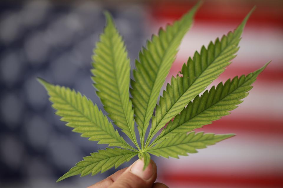 Black Lives Matters Could Help Push Federal Marijuana Legislation Forward