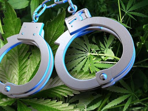 Congressman Urges for Marijuana Criminalization to End