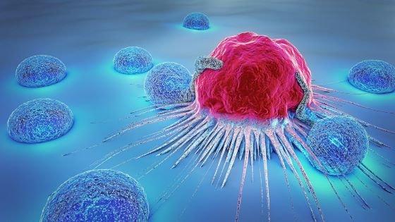 Medicinal Cannabis has Potential to Kill Cancer Cells