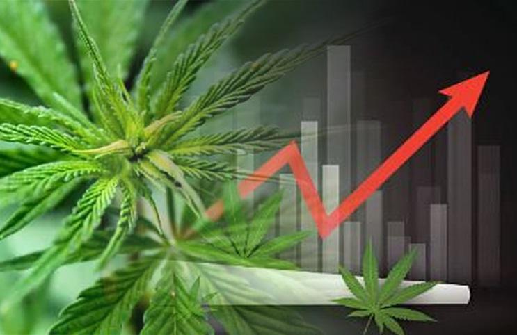 Marijuana ETF Issuer Says the Industry has 30-40% More Upside After Joe Biden Won Election
