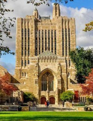Yale University Study Highlights Marijuana Withdrawal Syndrome Treatment