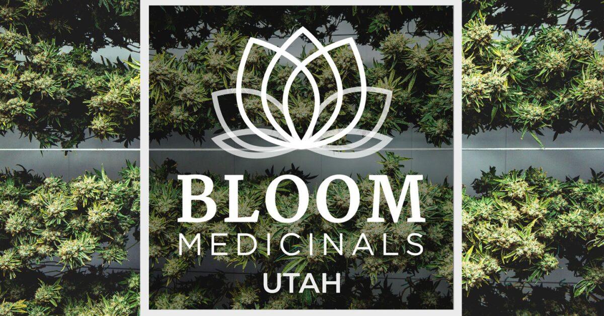 First Medical Marijuana Pharmacy Opens in South Utah