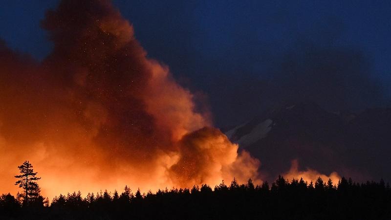 A Marijuana Company's Lawn Mower Started a Big California Wildfire