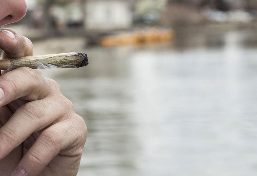 Study Finds Marijuana Use Did Not Climb Following Legislation in States