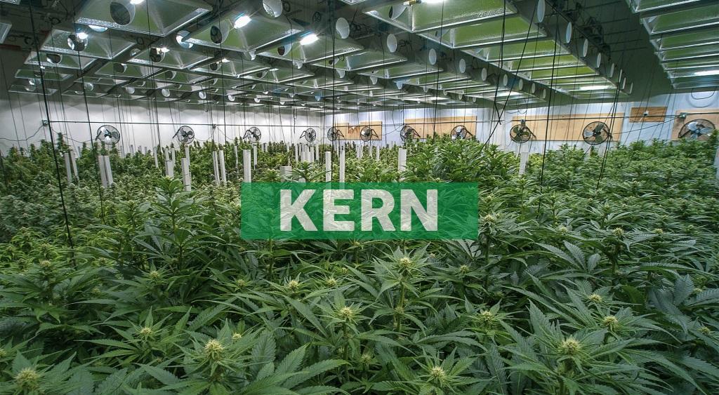 Akerna to Acquire Marijuana ERP Software Firm 365 Cannabis for $17M