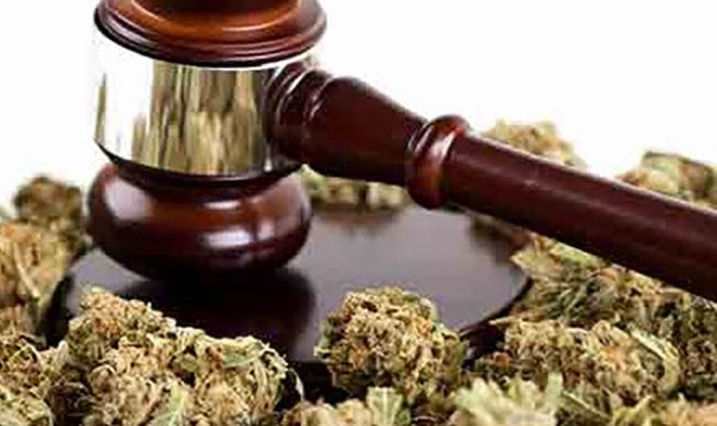 Lawmakers in South Dakota Introduce Bill to Legalize Adult Use Marijuana